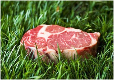 Top Seven Reasons to Buy Grass-Fed Meat